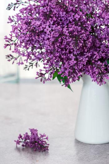 White vase of