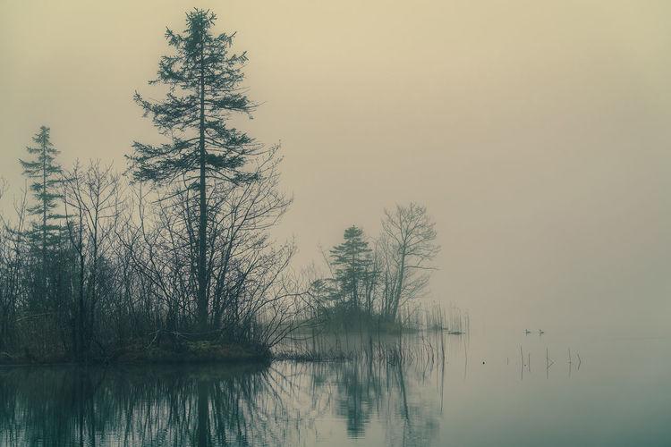 Misty and foggy