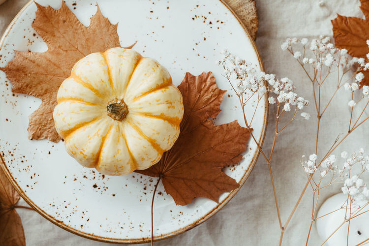 Top view on a decorated table setting for Thanksgiving dinner. Autumn ornate, white pumpkin on ceramic plates. Table Setting Autumn Recipe Pumpkin Thanksgiving Fall Dinner October November Restaurant Christmas Food Tableplace Cutlery White Decoration Plate Dining Ceramic Event Holiday Party Banquet Luxury Gold Decor Celebration Festive Vintage Rustic Set Tableware Napkin Fork Menu Candles Interior Empty Still Life Directly Above High Angle View The Foodie - 2019 EyeEm Awards