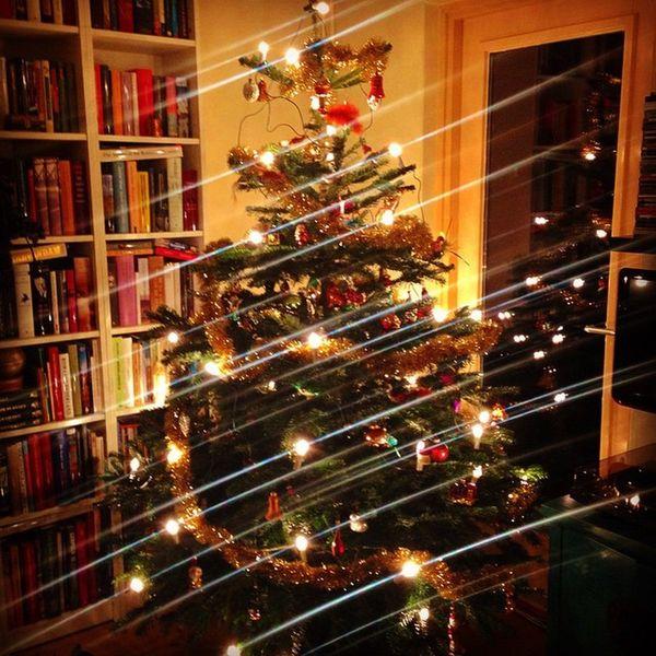 Taadaaa Kerstboom  Christmas Kerst Xmas