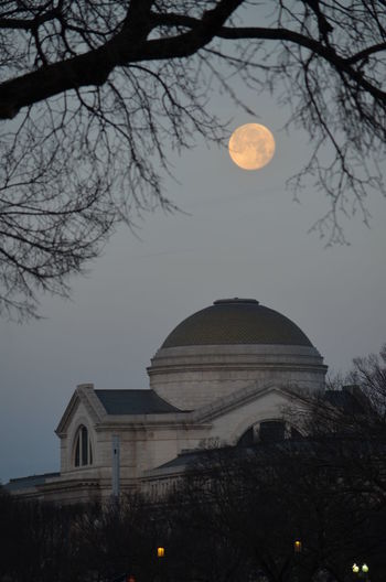 Architecture Astronomy Bare Tree Beauty In Nature Branch Dome Full Moon Landscape Moon Museum Of Natural History Nature Night No People Outdoors Sky Smithsonian Star - Space Tree