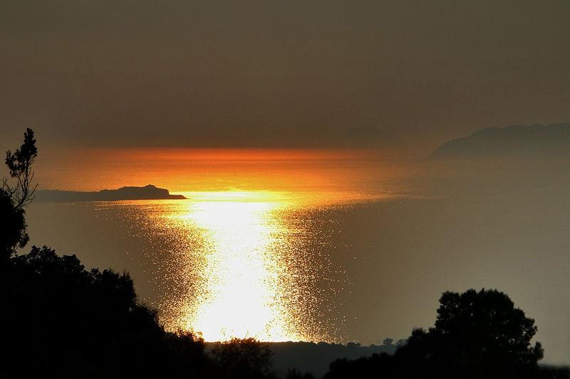 sunset Tree Sea