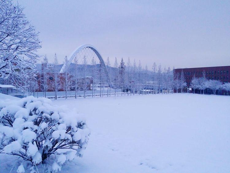 It's Cold Outside Korea Snow ❄ Winter MySchool InTheMorning Gotoschool Coldweather White