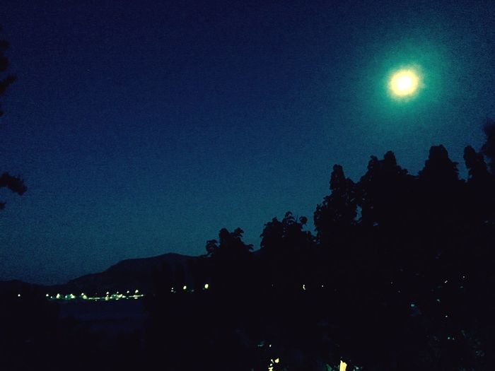 Night Relaxing Moonlight Shadow Lonely