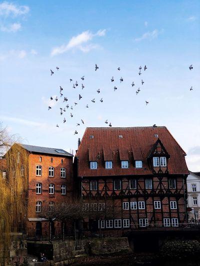 In Lüneburg