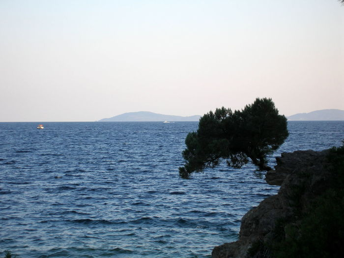Beauty In Nature Calm Greece Idyllic Nature Outdoors Sea Tree Vacations Water
