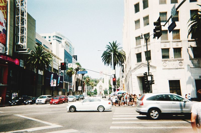 in the city of L.A. Hollywood California California Dreamin Los Angeles, California Grain Filmisnotdead Filmcamera Filmphotography Film 35mm 35mm Film 35mmfilmphotography Film Motor Vehicle Car Transportation Architecture Mode Of Transportation Building Exterior Land Vehicle Built Structure
