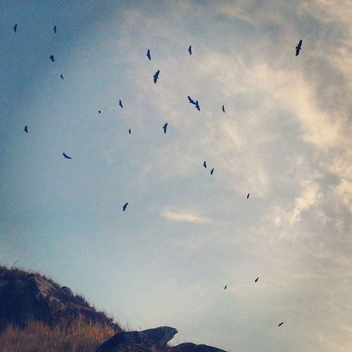 Ainda sobre domingo a tarde...vôo livre de verdade! Recreio Morrodorangel Errejota  Brasil vrauuuuu quintaldopedrinho sunset vidaboa almalavada terral sudoeste