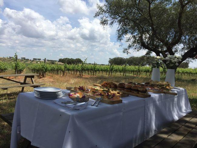 Farm Wine Picnic