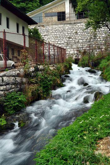 Bosnia And Herzegovina Green Relax Taking Photos