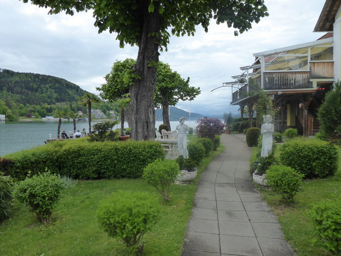 beautiful memories from Wörthersee/Kärnten/Austria🧡 Am Wörthersee/Austria Memories ❤ For My Friends 😍😘🎁 Nature Is My Sanctuary 🌳💚 Lakesideview Mood Captures Moody Atmosphere Paradise🔱 Beautiful Lake View Lovely Scenery Dreamlikescenery Tree Water Sky Plant Cloud - Sky