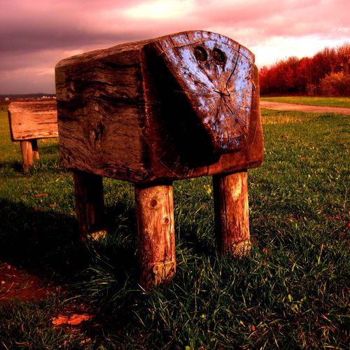 Close-up of rusty abandoned wood on field against sky