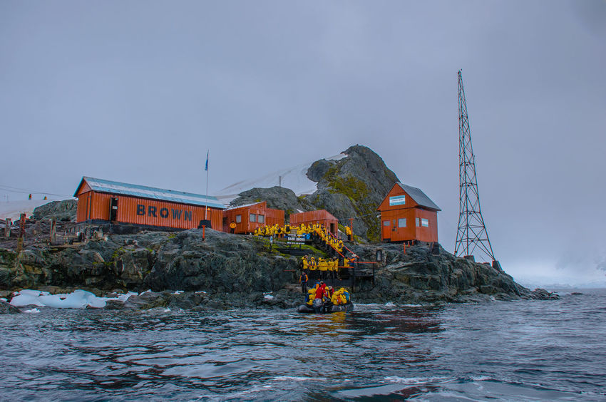 Antarctica Nature South Georgia Comorant Penguin Sea And Sky Ziseetheworld Ziwang