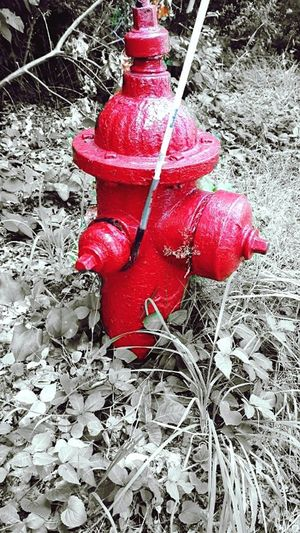 Hydrantequipment