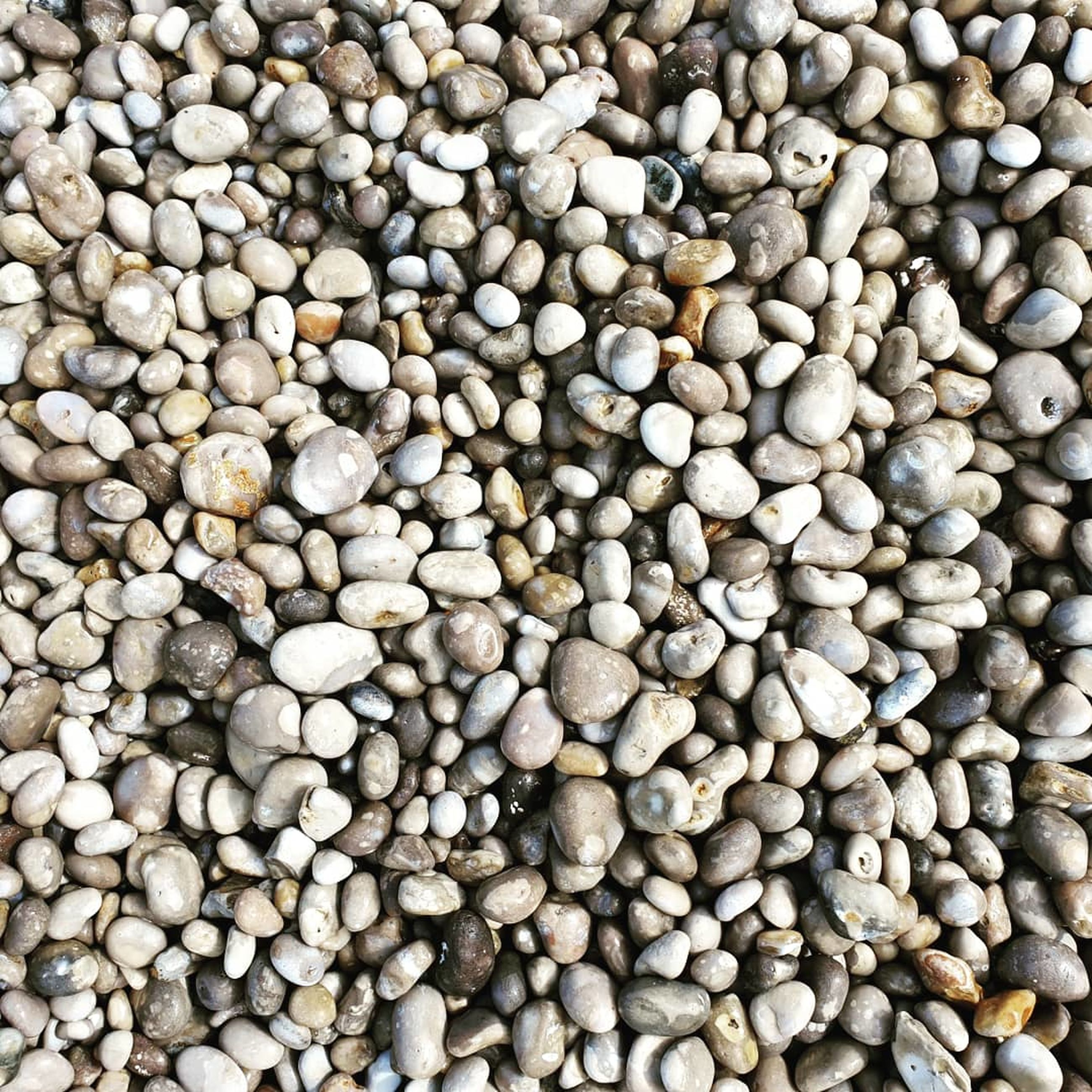 full frame, abundance, large group of objects, backgrounds, food and drink, food, no people, directly above, high angle view, still life, freshness, day, wellbeing, healthy eating, nature, outdoors, close-up, for sale, repetition, pebble