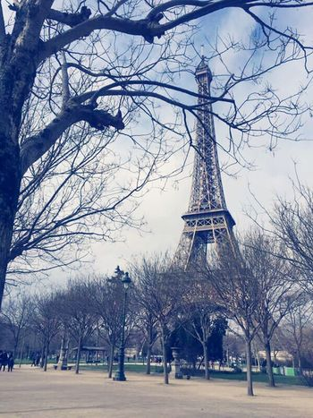 Paris Tree Bare Tree Travel Destinations Built Structure Branch Architecture Sky Outdoors Building Exterior Tree Trunk Travel Winter Day Monument City No People Nature Snow Cultures Snowing Torre Eiffel