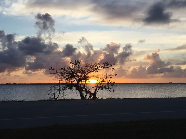 Sunset Sky Sea Scenics Beauty In Nature Silhouette Nature Tranquility Tranquil Scene Water Horizon Over Water Cloud - Sky Idyllic Beach Outdoors No People Tree Day River Sunrise Sunset_collection Beauty In Nature sunset at the river thru tree