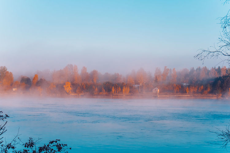 Autumn mood in Saint Petersburg Autumn Mood Water Scenics - Nature Tree Beauty In Nature Tranquil Scene Tranquility Sky Plant Nature No People Non-urban Scene Idyllic Fog Day Outdoors Waterfront Blue Land Power In Nature Colorful Nature