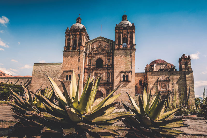 Church Oaxaca Central America Church City Mexico Oaxaca Oaxaca México  Oaxaca De Juárez Agave Agave Plant Architecture Building Exterior Built Structure Day History No People Outdoors Place Of Worship Religion Streetphotography Travel Destinations