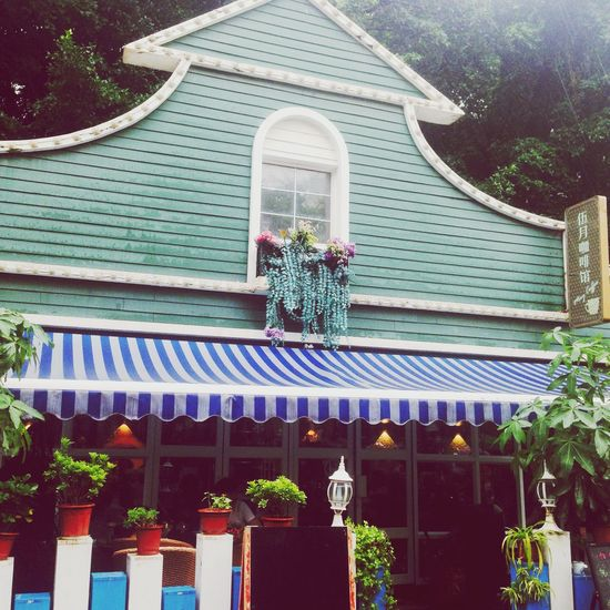 Flower Store Flower Collection Building