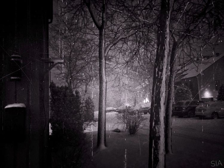 Snow Stormy Weather March 2017 Blackout Montréal Trees Ice Shadows & Lights Moments Canadian Winter Mothernature is not on our side! Winter Winter Wonderland Popular Photos EyeEm Best Edits Eye4photography  Eyeem Photography Night No People Catch up soon!!