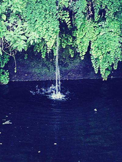 Waterfall Traveling Holiday Nature