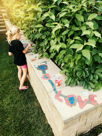 High angle view of girl standing against multi colored plants