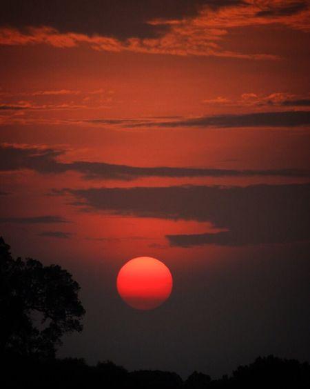 A Mara sunset Masai Mara Mara Masaai Mara Sunset Sunset_collection Sunsetporn Sunsetphotographs Dusk Wild Africansunset Africa Kenya Bucketlist Lucky Natural Natural Beauty WondersOfNature Canonphotography Canon 60d