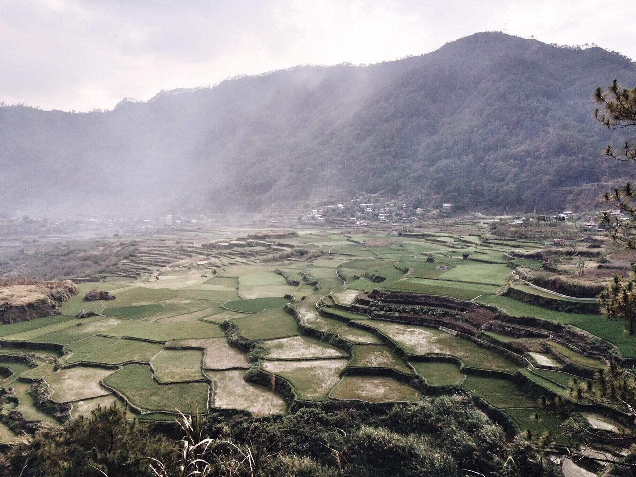 High angle view of farms against mountain
