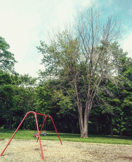 I'm pretty sure this tree missed spring training... Playground Lost Innocence Grunge Childhood Sky Nature Outdoors No People Tree Dead Scenery Beautiful Life Places Outside Goodvibes