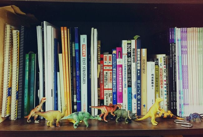 Professor office and son's dinosaurs lLarge Group Of ObjectssShelfiIn A RowmMulti ColoredrRetail cCollectionhHobbiesnNo PeoplemMan Made ObjectdDinosaurBBookshelfdDesignPProfessorsSon