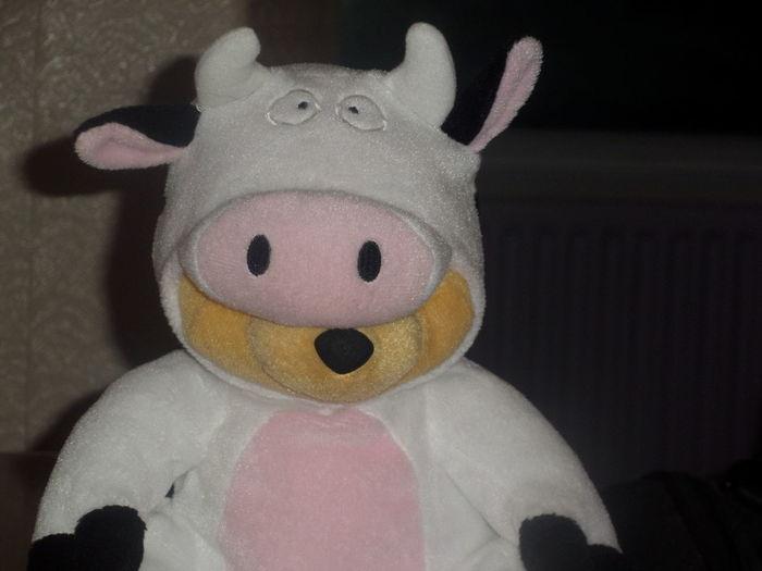 Winniethepooh Tedddy Bear