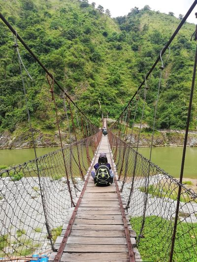 Rear view of man sitting on footbridge in forest