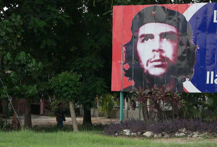 Billboard of Che Guevara in Holguin, Cuba, 2017. Cuba Cuban Revolution Poster Revolutionary Billboard Che Guevara Human Representation Infamous Outdoors Socialism Socialist Tree
