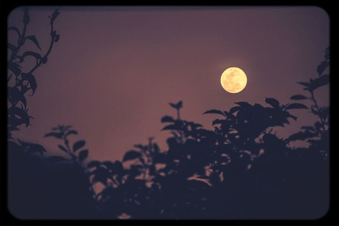 From Yesterday  Red Moon Amazing Nature