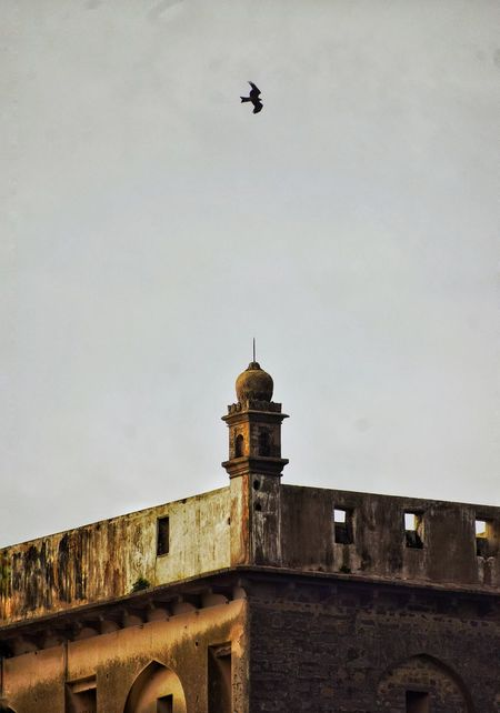 EyeEm Selects Architecture Building Exterior Built Structure Low Angle View Outdoors No People Sky Bird Nikon D3200 Golconda Hyderabad Hyderabaddiaries Hyderabad Monuments Hyderabad Heritage EyeEmNewHere