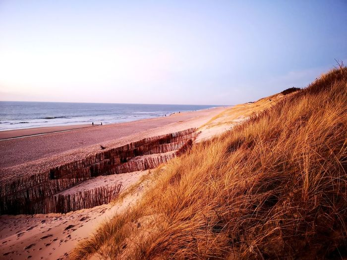 Blue Sky Gold Colored Vacation Gold Beach Sand Dune Sea Water Beach Desert Sunset Wave Sand Low Tide Arid Climate