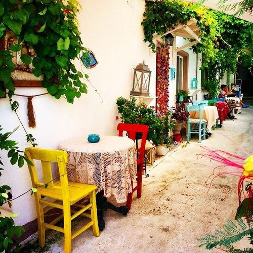 Adanın güzel sokakları....Bozcaada Sokaktayasam Hayatakarken