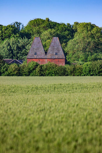 Oast Houses, Garden of England, Kent,England. Plant Tree No People Nature Land Architecture Rural Scene Countryside Farm Hops Beer Drying Process Icons Iconic Buildings Sunset Vivid International Getty Images EyeEm Gallery Green Color Growth Sky Day Grass Field Tranquility Tranquil Scene Beauty In Nature Scenics - Nature Environment Built Structure Focus On Background Outdoors
