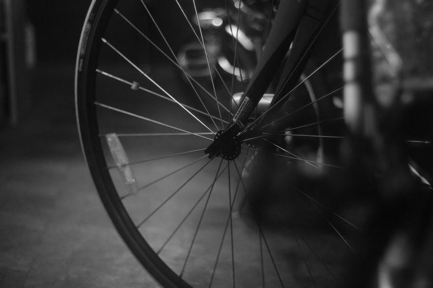 『15:55:08』 2016-10-24 Bicycle Spoke Mode Of Transport No People Land Vehicle Close-up Day Outdoors Nature Animal Themes Tire