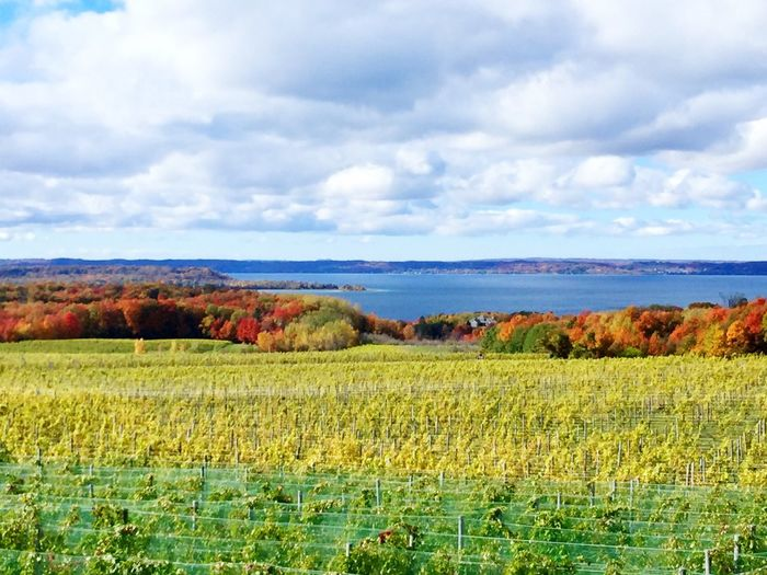 Wine Wine Tasting Clouds And Sky Colors Of Autumn Lake View Lake Michigan Trees Traverse City Michigan Pure Michigan