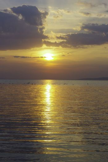 Beauty In Nature Calm Horizon Over Water Nature Orange Color Sunset Tranquil Scene Vibrant Color Water