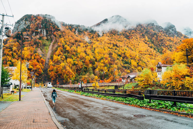 Daisetsuzan Autumn Change Tree Plant Nature Day Orange Color Transportation Beauty In Nature Rail Transportation Architecture Outdoors Track Railroad Track Sky Built Structure Real People Mode Of Transportation Yellow Road Autumn Collection