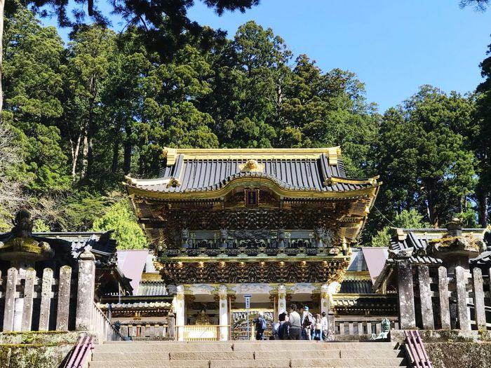 Nikko Toshogu Shrine Tree Plant Built Structure Architecture Nature Building Exterior Sky