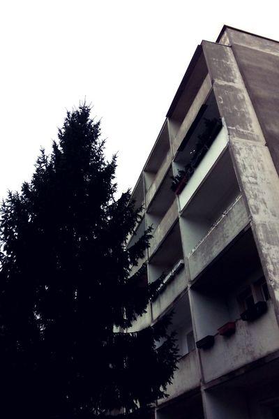 Bonjour Tristesse Open Edit My Fuckin Berlin Plattenbau Ostberlin Minimalobsession Urban Architecture Opposites Closeness