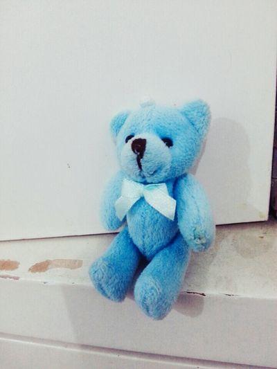 Mr.Blues Teddy Blue Cute♡