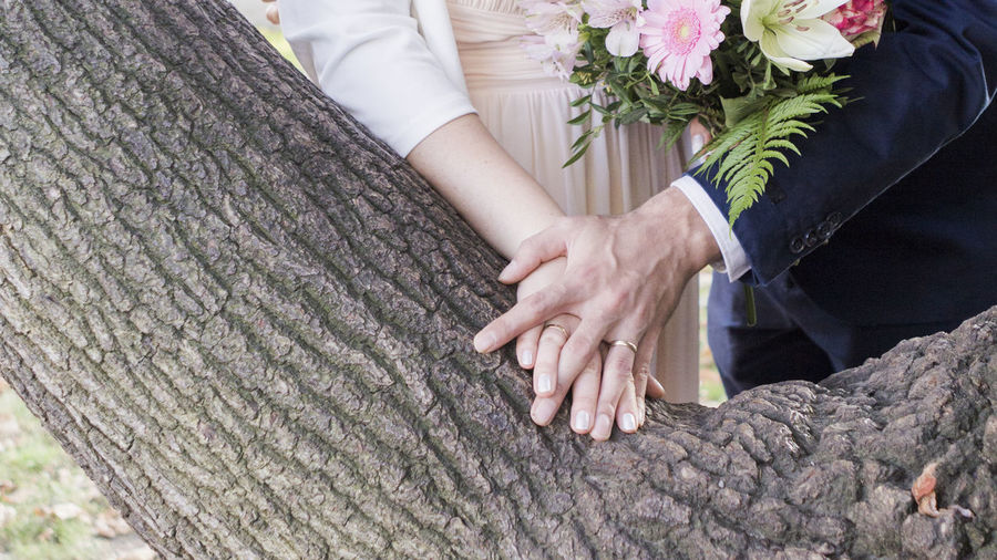 Midsection of bride and bridegroom holding hands by tree