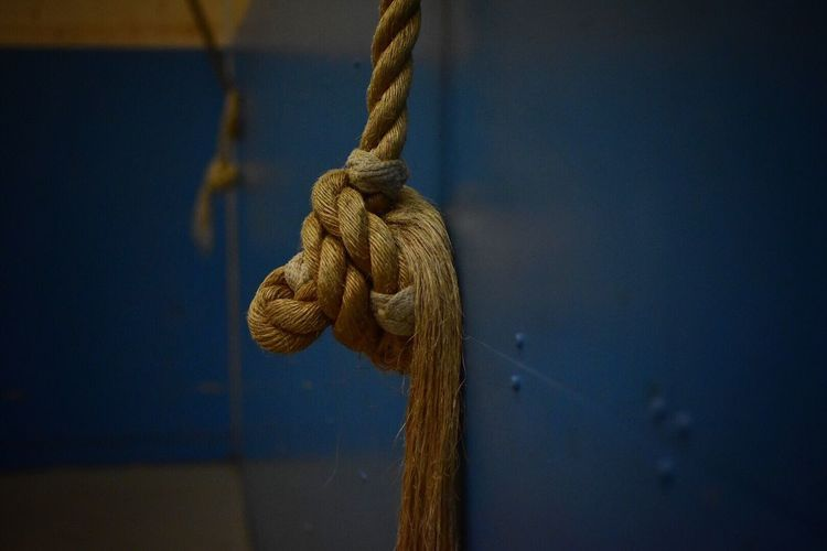 Rope climb anyone? Rope Strength Durability Tied Knot No People Close-up Day Indoors  Rope Climb Fibers Gym Childhood Youth Excercise Climb Wall Hook Inside Indoor Sports