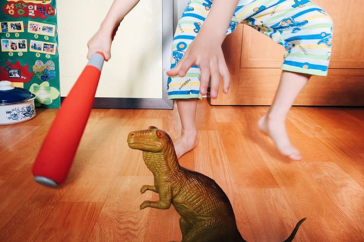 Low section of boy with dinosaur toy at home