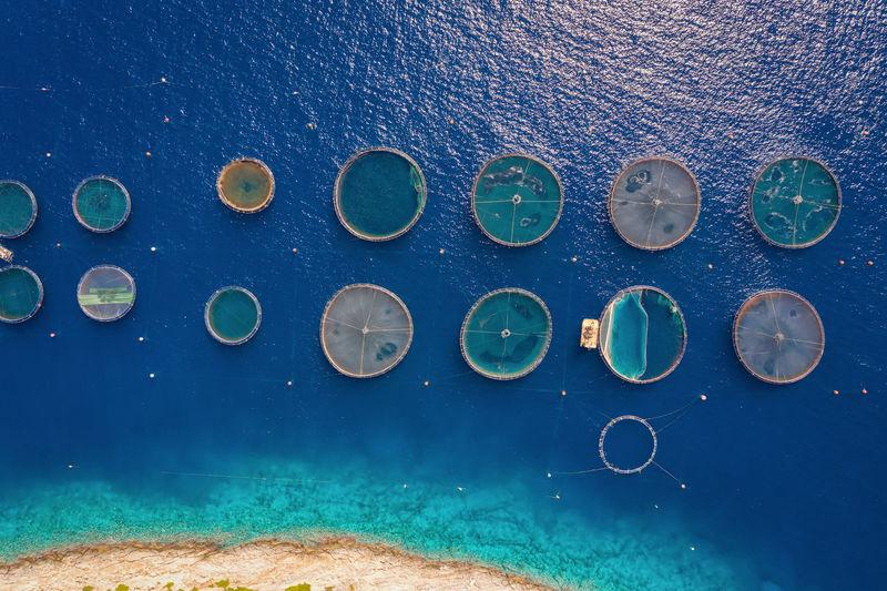 High angle view of fishing nets on sea